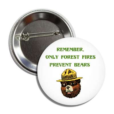 remember only forest fires prevent bears smokey ranger cartoon kids