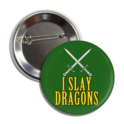 I slay dragons random funny saying