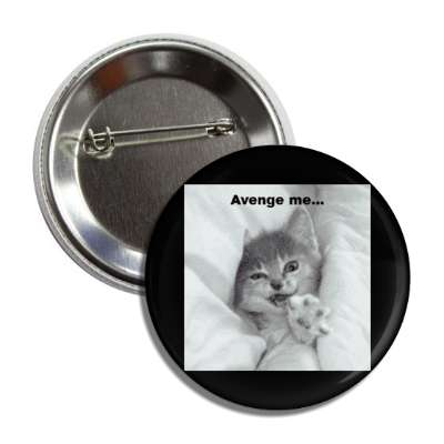 avenge me lolcats kitteh kitties kittens cat cats internet meme memes funny sayings popular pop reddit 4chan