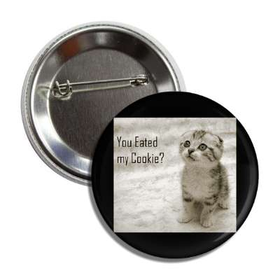 you eated my cookie lolcats kitteh kitties kittens cat cats internet meme memes funny sayings popular pop reddit 4chan