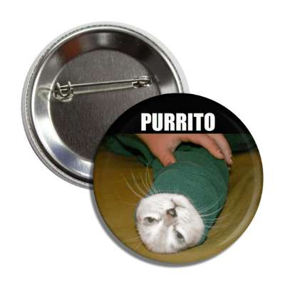 purrito lolcats kitteh kitties kittens cat cats internet meme memes funny sayings popular pop reddit 4chan