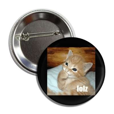 lolz lolcats kitteh kitties kittens cat cats internet meme memes funny sayings popular pop reddit 4chan