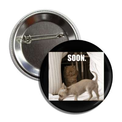 soon lolcats kitteh kitties kittens cat cats internet meme memes funny sayings popular pop reddit 4chan