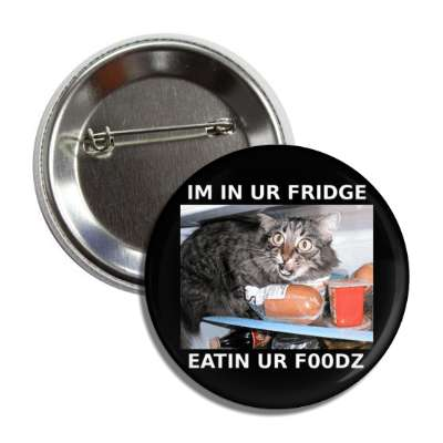 im in ur fridge eating ur foodz lolcats kitteh kitties kittens cat cats internet meme memes funny sayings popular pop reddit 4chan
