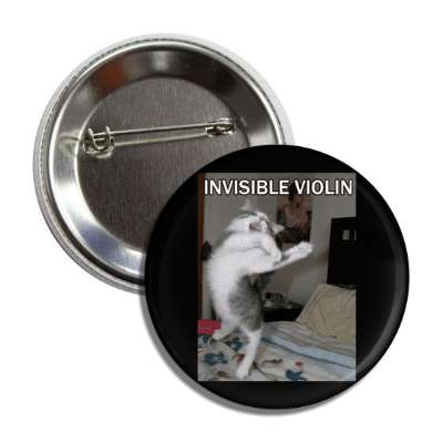 invisible violin lolcats kitteh kitties kittens cat cats internet meme memes funny sayings popular pop reddit 4chan