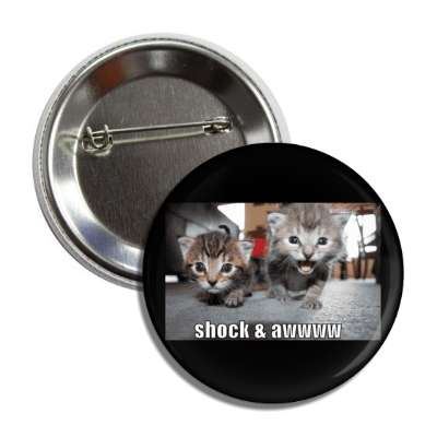 shock and aww lolcats kitteh kitties kittens cat cats internet meme memes funny sayings popular pop reddit 4chan