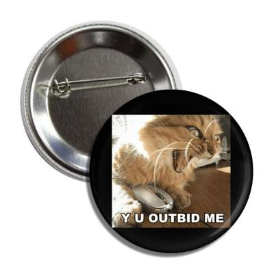 y u outbid me lolcats kitteh kitties kittens cat cats internet meme memes funny sayings popular pop reddit 4chan