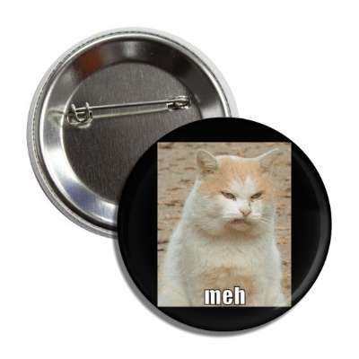meh lolcats kitteh kitties kittens cat cats internet meme memes funny sayings popular pop reddit 4chan