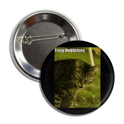 trixy hobbitses lord of the rings gollum lolcats kitteh kitties kittens cat cats internet meme memes funny sayings popular pop reddit 4chan