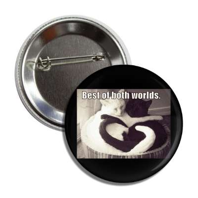 best of both worlds button