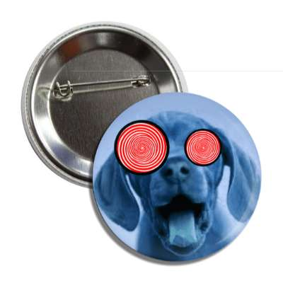 crazy dog spiral eyes blue button