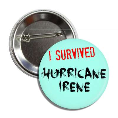i survived hurricane irene button
